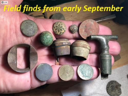 Name:  Field finds early Sep.jpg Views: 88 Size:  32.0 KB
