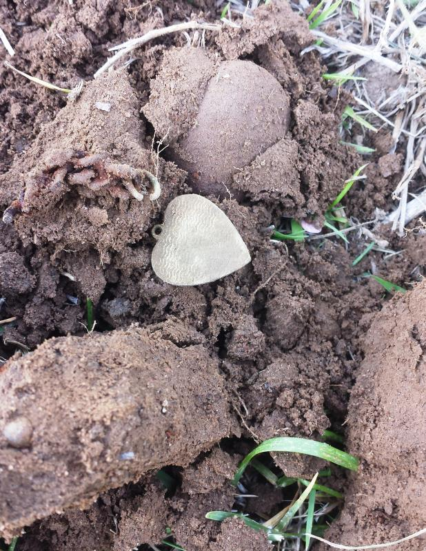 Name:  Heart pendant.jpg Views: 199 Size:  145.4 KB