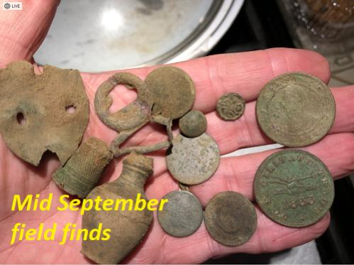 Name:  Field finds mid Sep.jpg Views: 133 Size:  31.0 KB