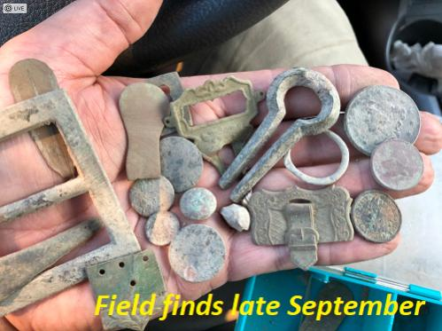Name:  Field finds late Sep.jpg