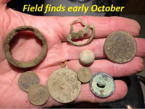 Name:  Field finds early Oct.jpg