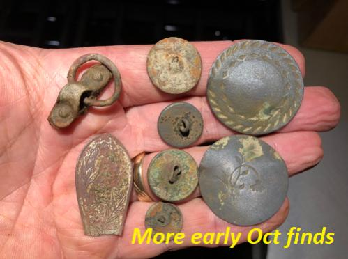 Name:  Field finds more early Oct.jpg